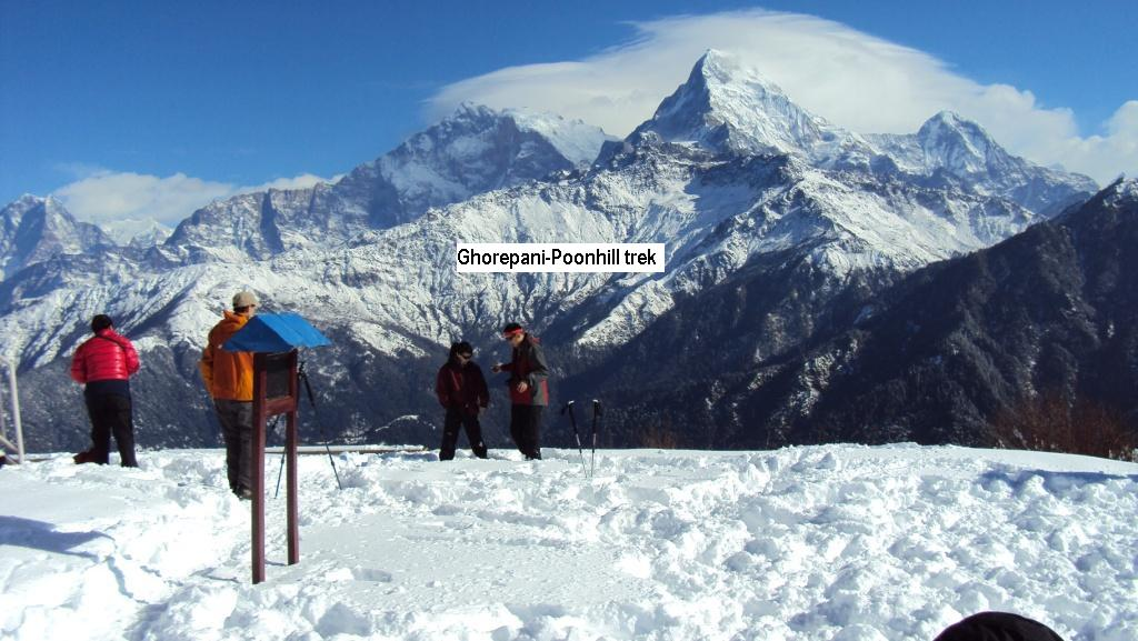Trekwithguide, independent trekking guide in pokhara-Nepal